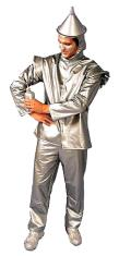 Rental store for TIN MAN   MASK  SILVER FABRIC  ADULT in Kingsport TN