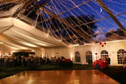 Where to find CLEAR LIGHTS  FOR DRAPING TENT in Kingsport