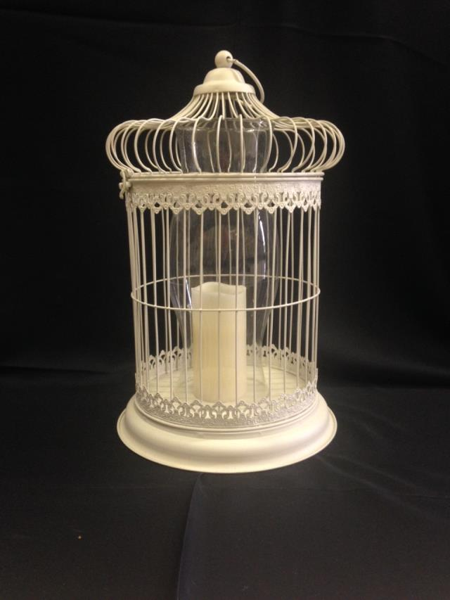 Where to find BIRD CAGE  VINTAGE   IVORY in Kingsport