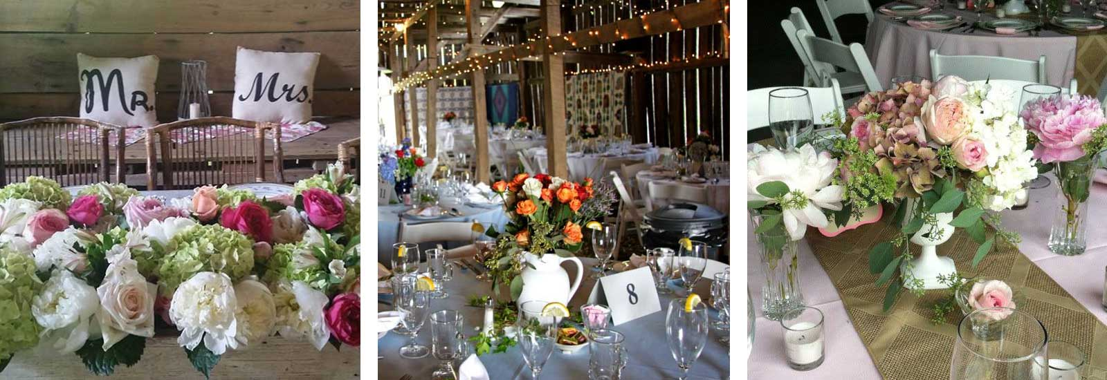 Action Party Rental Event Rentals And Party Rentals In